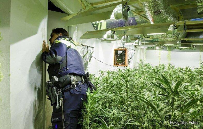 Rook leidt naar 'zeer gevaarlijke' wietplantage op slaapkamer Koog aan de Zaan