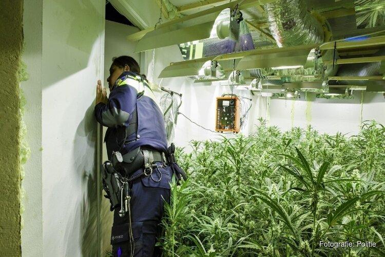 Meeste hennepkwekerijen in Noord-Holland: Amsterdam spant kroon