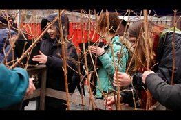 Basisschoolleerlingen vergroenen Poelenburg in Zaandam