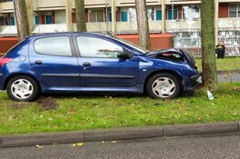 Auto tegen boom in Zaandam
