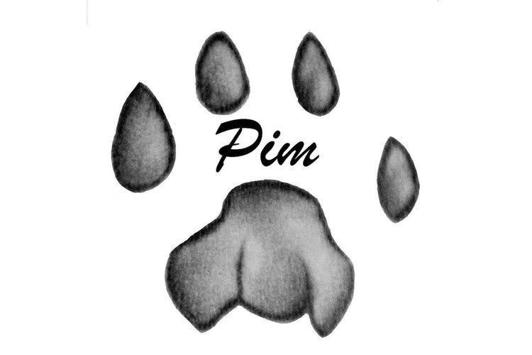 Nieuwe extra mogelijkheden voor les bij Pim Hondenopvoeding