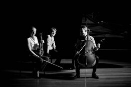 Het Mosa Trio speelt op zaterdag 17 oktober in de Vermaning in Zaandam