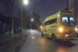 Auto tegen boom gereden in Zaandam