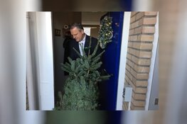 Kerstbomenbos bij zorgcentrum Pennemes