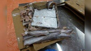 Onderschepte partij cocaïne was bestemd voor bedrijf in Zaandam: zes mannen opgepakt bij inval