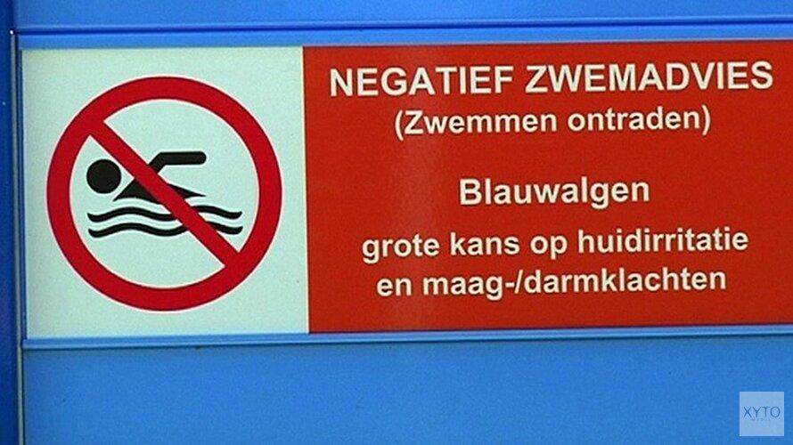 Geen blauwalg meer in recreatiegebied Zaandam
