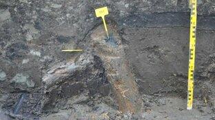 Mogelijk stukje Romeinse historie in Krommenie